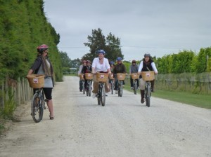 Wine and Wheels with March Hare Cycling